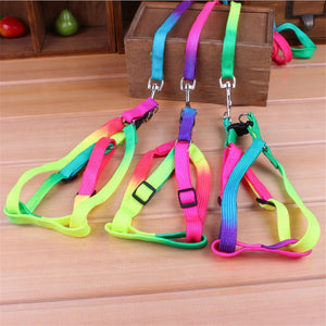 Colorful Rainbow Pet Dog Collar Harness Leash Soft Walking Harness Lead Colorful and Durable Traction Rope Nylon 120cm