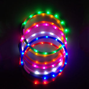 USB Rechargeable Flashing Night Dog Collars Luminous Pet Collar LED Light USB Dog Collar Glowing Teddy Flash Collar Pet