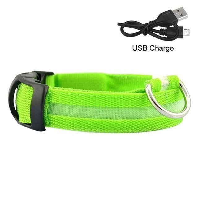 USB Rechargeable LED Dog Collar Night Safety Flashing Glow Pet Dog Cat Collar With Usb Cable Charging Led Dog Collar Perros