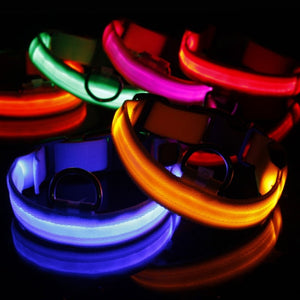 Nylon LED Pet Dog Collar Night Safety Flashing Glow In The Dark Dogs Leash Neck Band Luminous Fluorescent Collars Pets Supplies