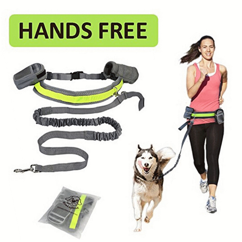 Pet Dog Cat Running Jogging Padded Waist Belt Reflective Strip Elastic Leash Perfect Walking Training Dog Leash Set Hands Free