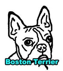 Boston Terrier Dog Tees
