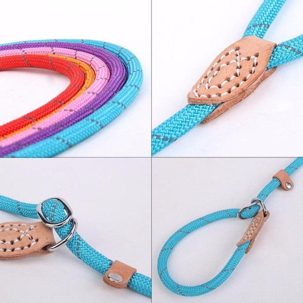Adjustable Training Dog Leash-Dog Leashes-Blue-S-8844056-blue-s-0-6x150cm-Paws and Whiskers
