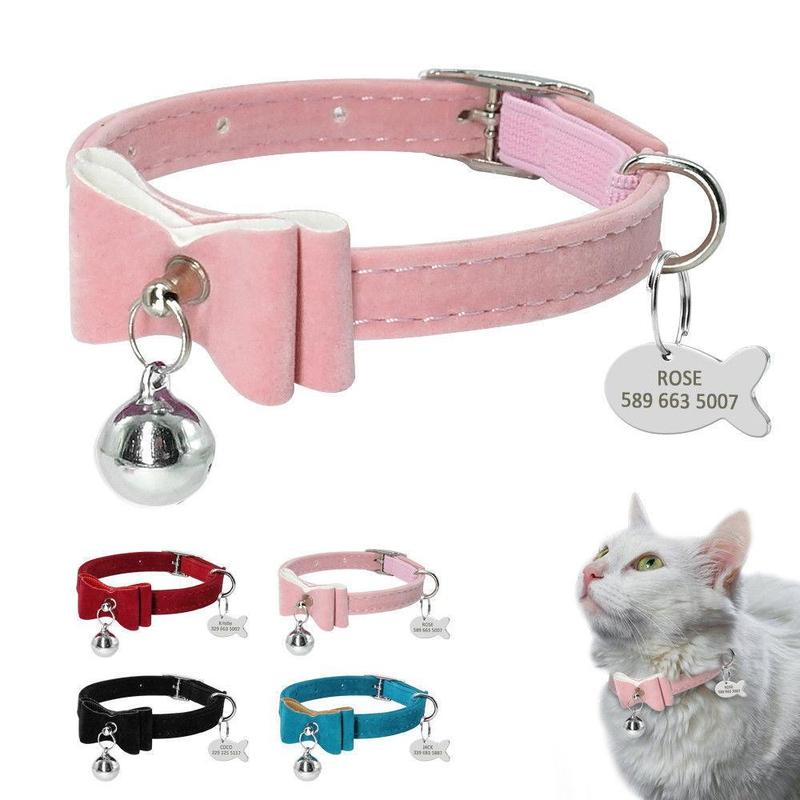 Cat Collar with Bell and Personalized Name Tag-Cat Collars-Black-34164087-black-xs-Paws and Whiskers