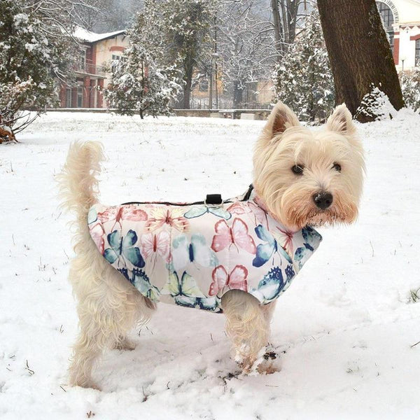 Dog Rain Jacket Designed to Keep Pets Warm During Winter-Dog Sweaters & Coats-Butterflies-L-30184823-rosa-l-Paws and Whiskers