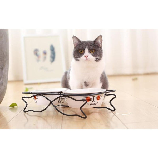 Double Cat Bowl with Elevated Frame-Cat Food & Water Bowls-White-S-13033510-white-s-Paws and Whiskers