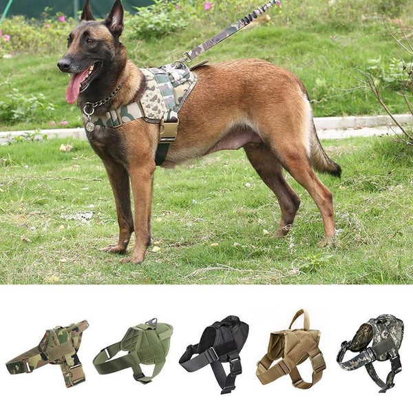 Durable Tactical Dog Harness Vest for Training-Dog Harnesses-Black-S-29784213-black-s-Paws and Whiskers