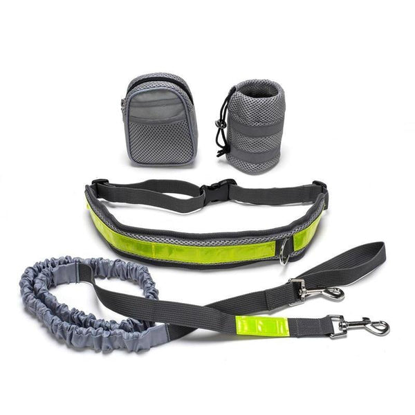 Hands-Free Dog Leash for Large Dog-Dog Leashes-5685405-green-gray-m-Paws and Whiskers