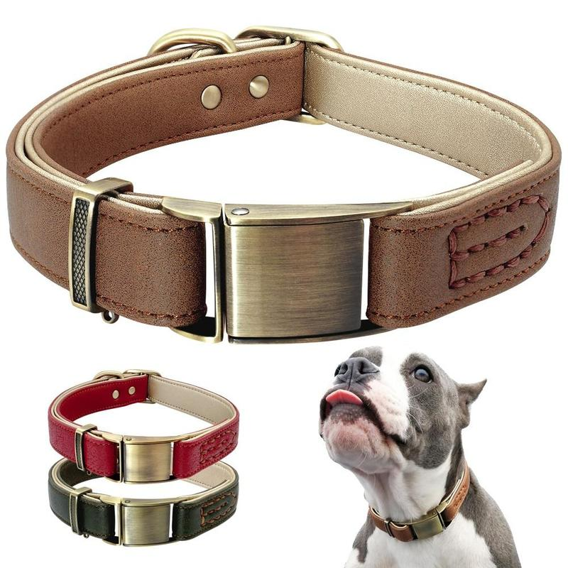 Heavy-Duty Dog Collar with Padding-Dog Collars-Brown-S-27798793-brown-s-Paws and Whiskers