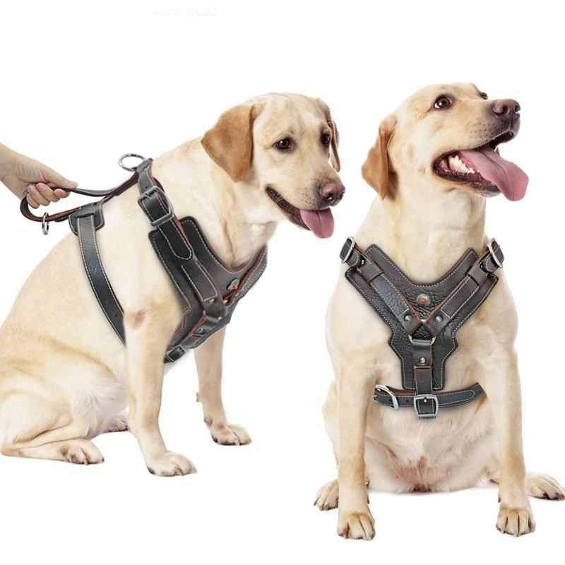 Leather Dog Harness for Large Dog-Dog Harnesses-16719123-brown-xl-Paws and Whiskers