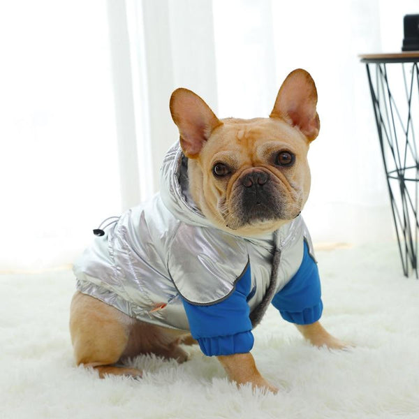 Metallic Hoodie Style Winter Dog Jacket-Dog Sweaters & Coats-Silver-XS-31467012-silver-xs-Paws and Whiskers
