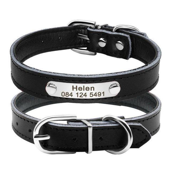 Padded Dog Collar with Engraved Name Plate-Dog Collars-Black-Neck 32 to 39 cm-19144847-black-neck-fit-32-to-39-cm-Paws and Whiskers