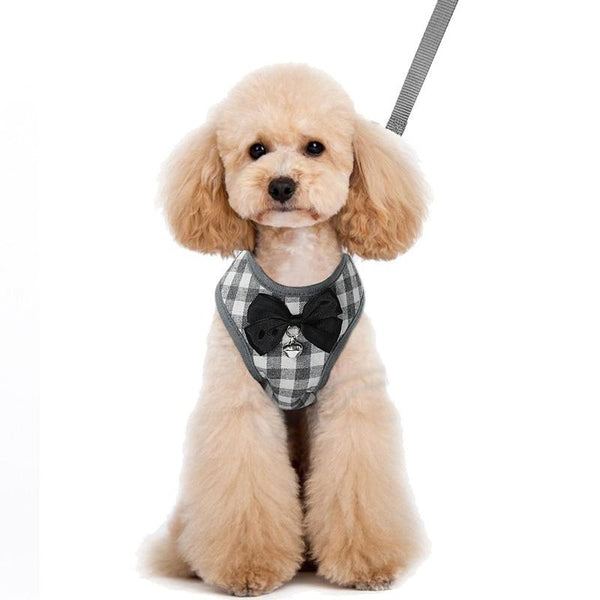 Padded Dog Harness with Plaid Pattern and Bell Bow Tie-Dog Harnesses-Gray-S-14115638-gray-s-Paws and Whiskers