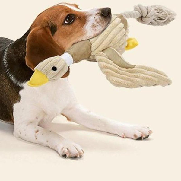 Plush Dog Toys with Interactive Squeak and Bite Resistance-Dog Plush Toys-22068833-duck-31-x-25-cm-Paws and Whiskers