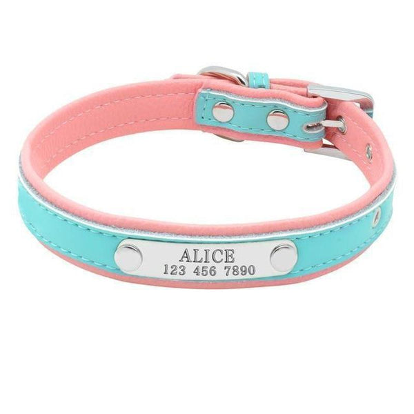Small Fabric & Leather Dog Collar with Personalized Name Plate-Dog Collars-Blue-M-19687351-9-m-Paws and Whiskers