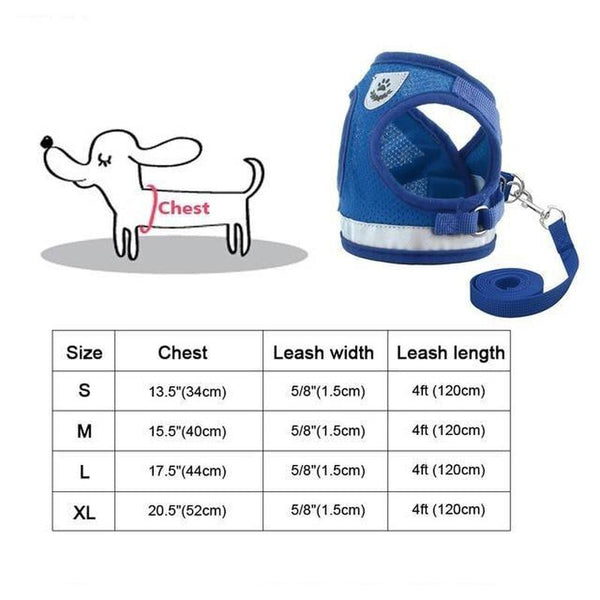 Soft Comfortable Easy Walk Harness Includes Leash-Dog Harnesses-Blue-S-30973182-6-s-Paws and Whiskers