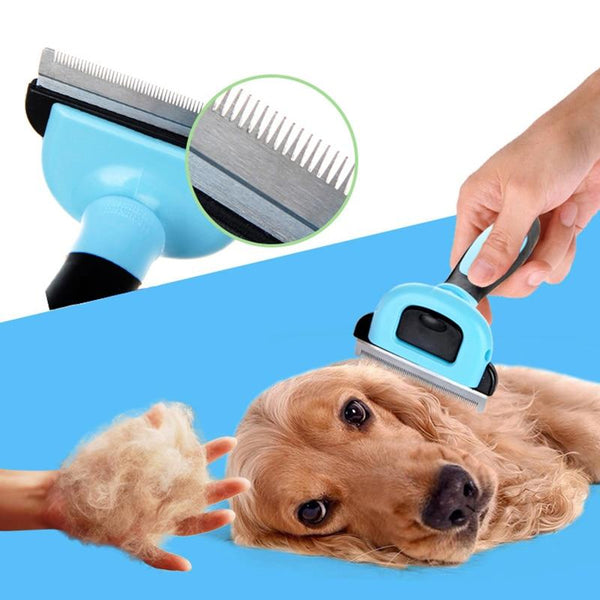 Stainless Steel Detachable Dog Brush-Dog Brushes, Combs & Blowdryers-Blue-S-15236512-blue-s-Paws and Whiskers