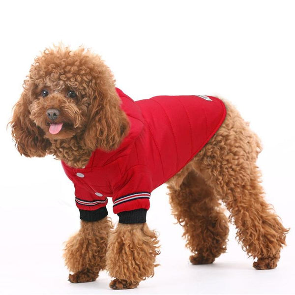 Warm Dog Sweater with Hoodie for Winter-Dog Sweaters & Coats-Gray-XS-19568856-gray-xs-Paws and Whiskers