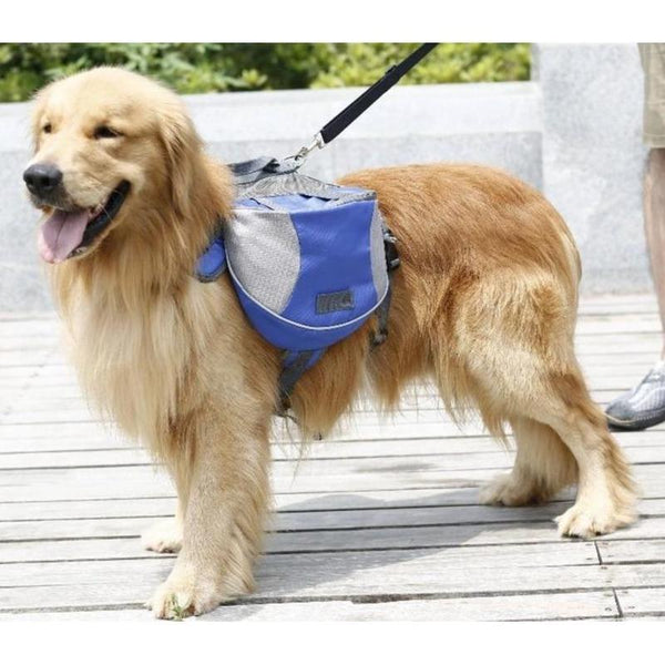 Waterproof Dog Harness with Backpack for Hiking & Traveling-Dog Harnesses-Blue-S-682457-blue-s-Paws and Whiskers