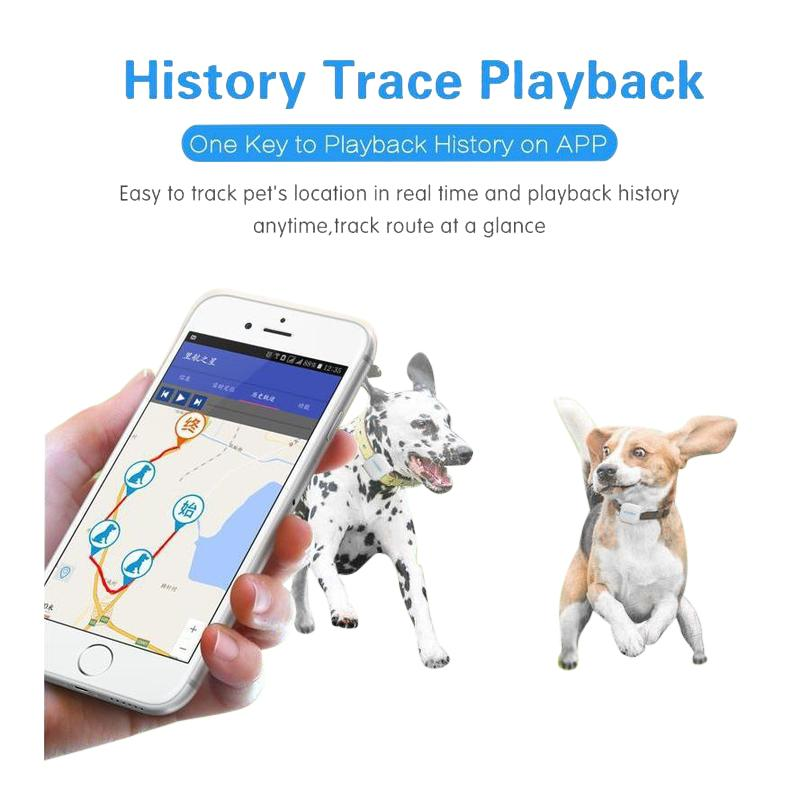 Waterproof GPS Dog Collar and Pet Locator-Dog GPS Trackers-28977978-g02-Paws and Whiskers