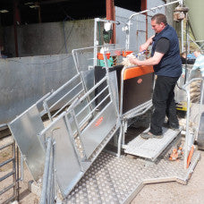 Interview on the Combi  Clamp Sheep Handling System by Real Ag at Ag in Motion 2019
