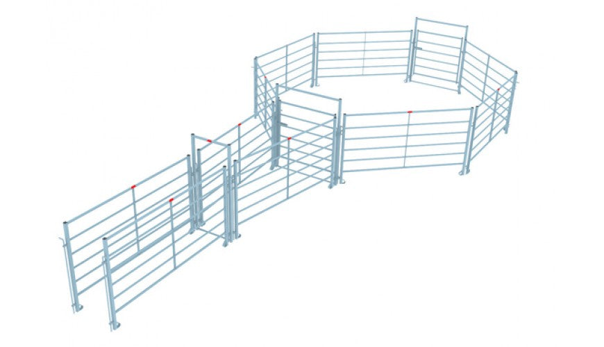 Corral System for Cattle