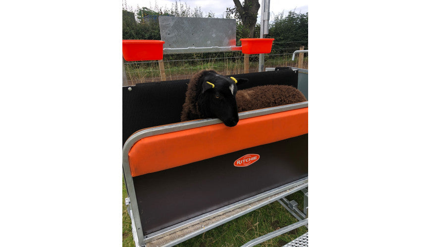 Lamb Cushion Wall for Combi Clamp