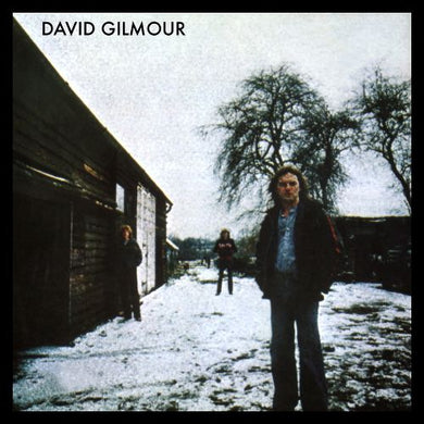 Nearly White Hot Stamper - David Gilmour - David Gilmour
