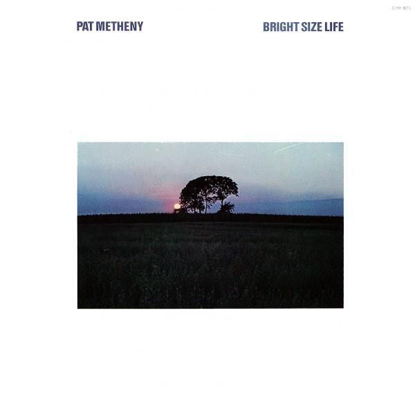 White Hot Stamper - Pat Metheny - Bright Size Life