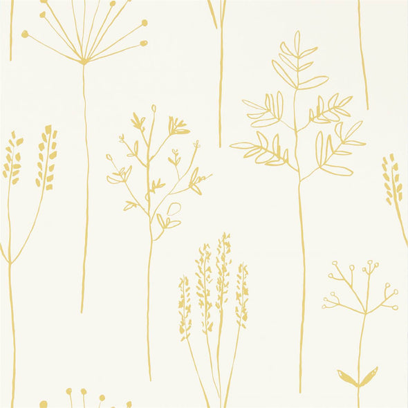 Stipa (Available in 4 colours)