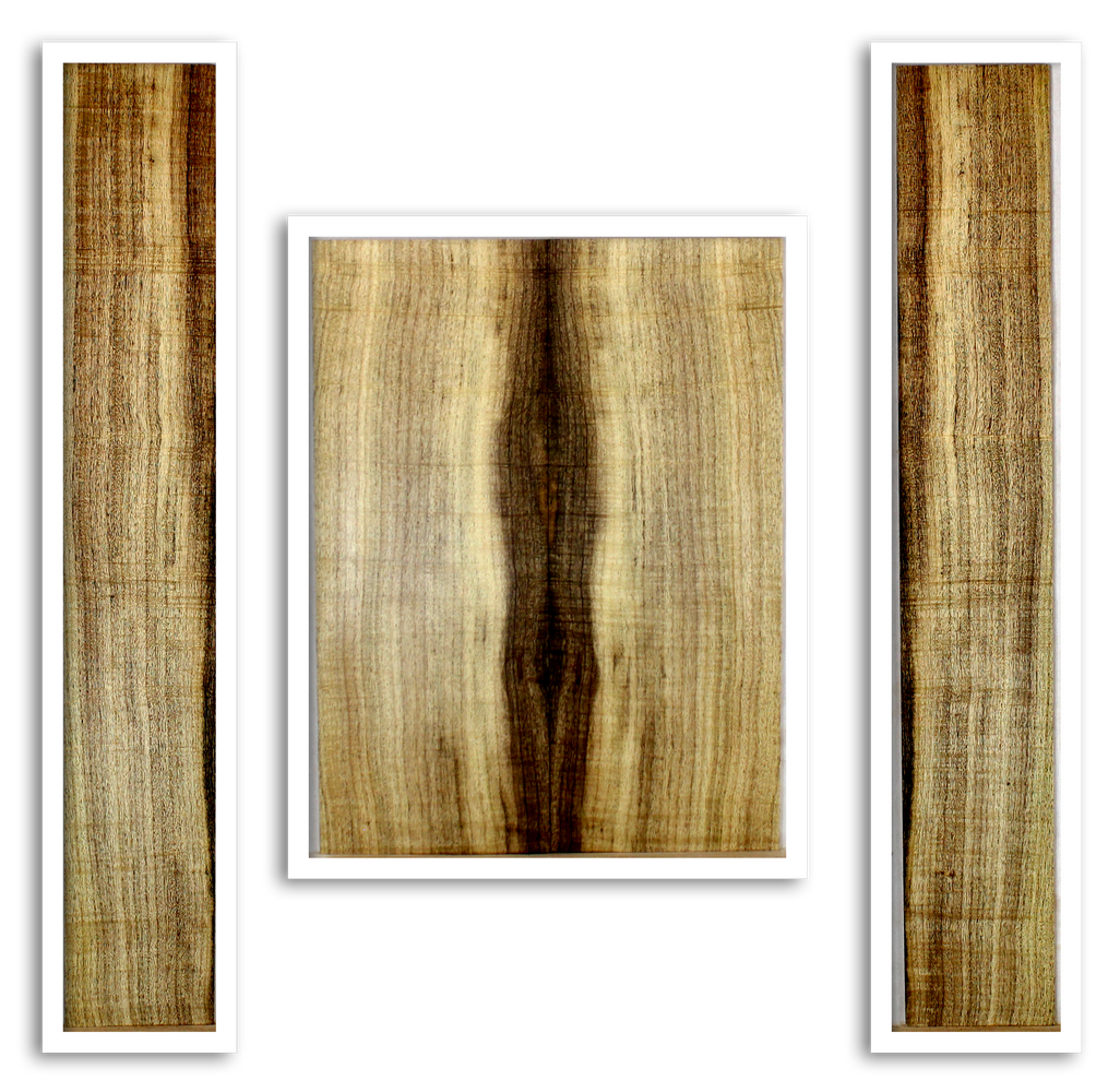 Myrtle Tonewood Acoustic Guitar Back and Sides