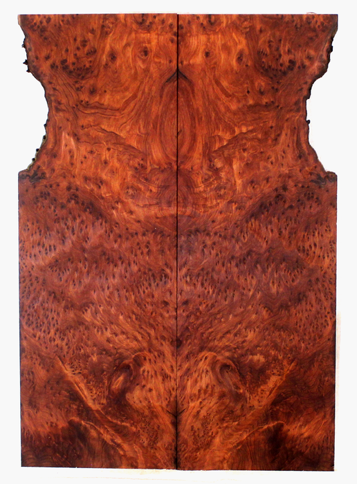 Redwood Guitar Drop Top (FG71)