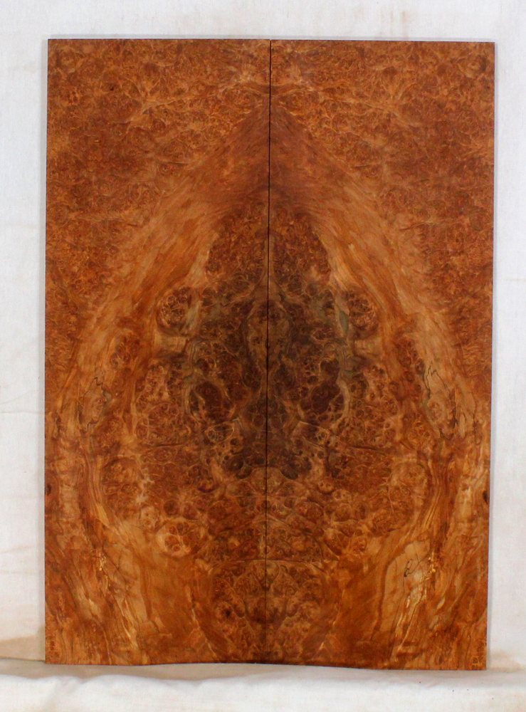 Maple Burl Electric Guitar Top