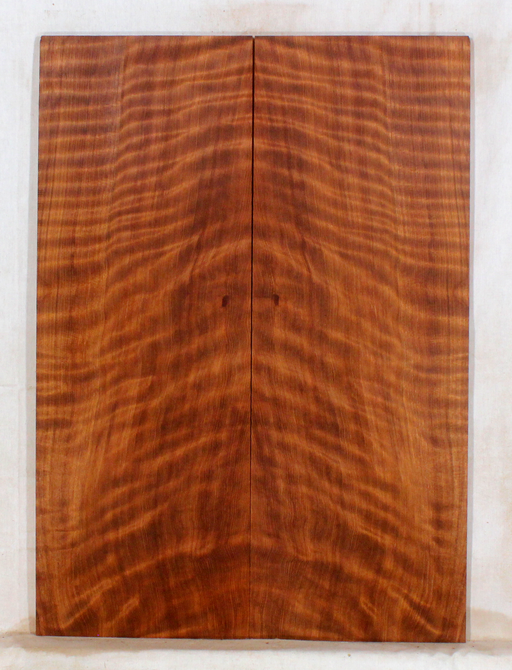 Redwood Guitar Fat Top