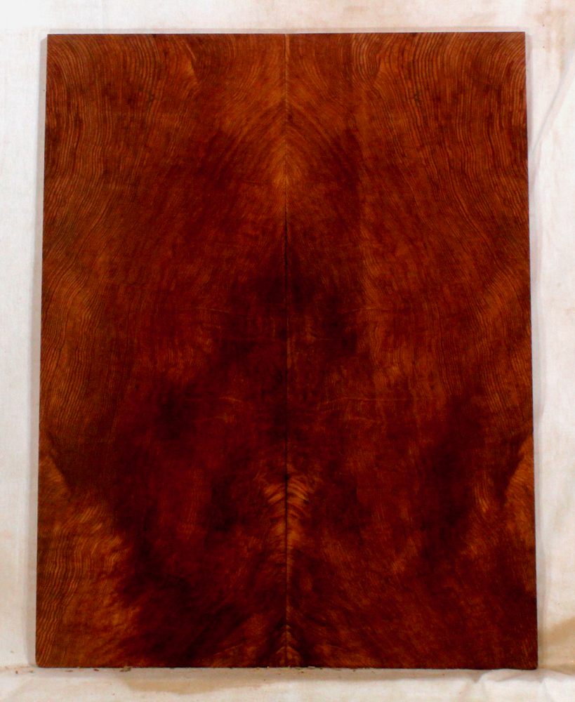 Redwood Solid Body Guitar Fat Top