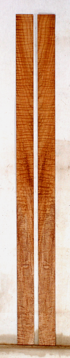 Maple Bow Veneers (SJ83)