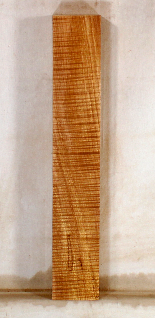Maple Ukulele Neck (TB11)