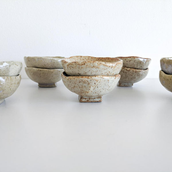 Ceramic Spice Bowl Set