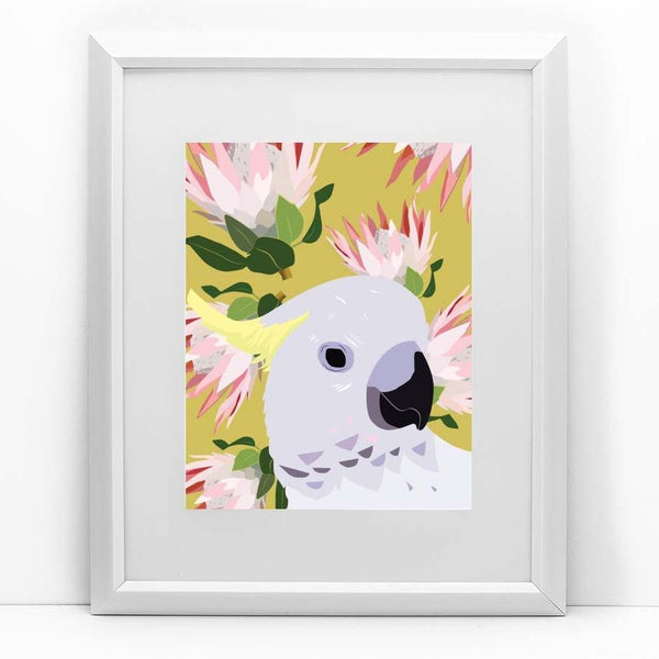 Sulpher Crested Cockatoo Print