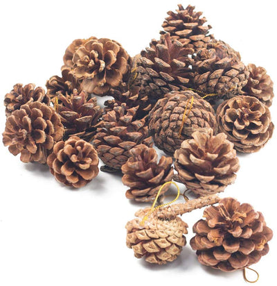 Natural Pine Cones, Lodge Pole Decorative Fall Winter Holiday Home Decor Vase Filler, Christmas Tree Ornaments,18 PCS - 3 Otters