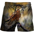 3D All Over Print  Animals Hawks Hunting Hoodie - Amaze Style™