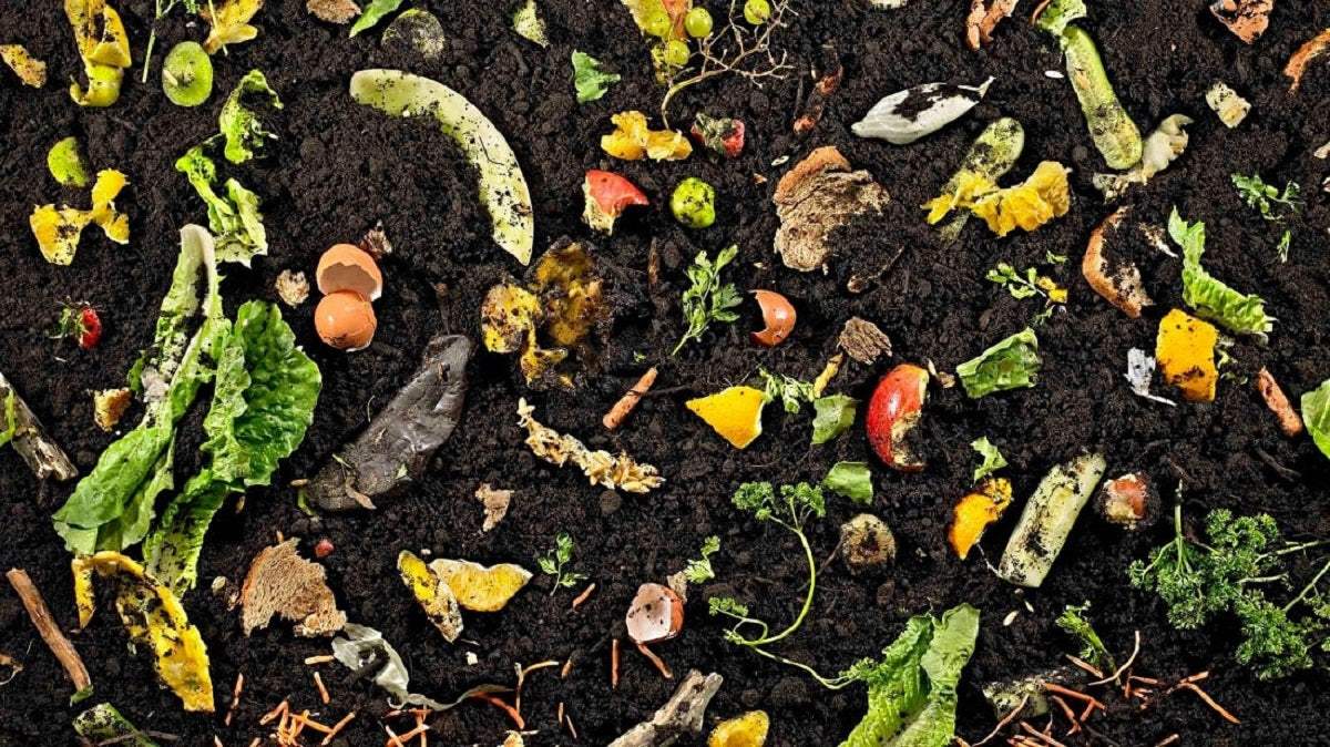 Encourage Composting