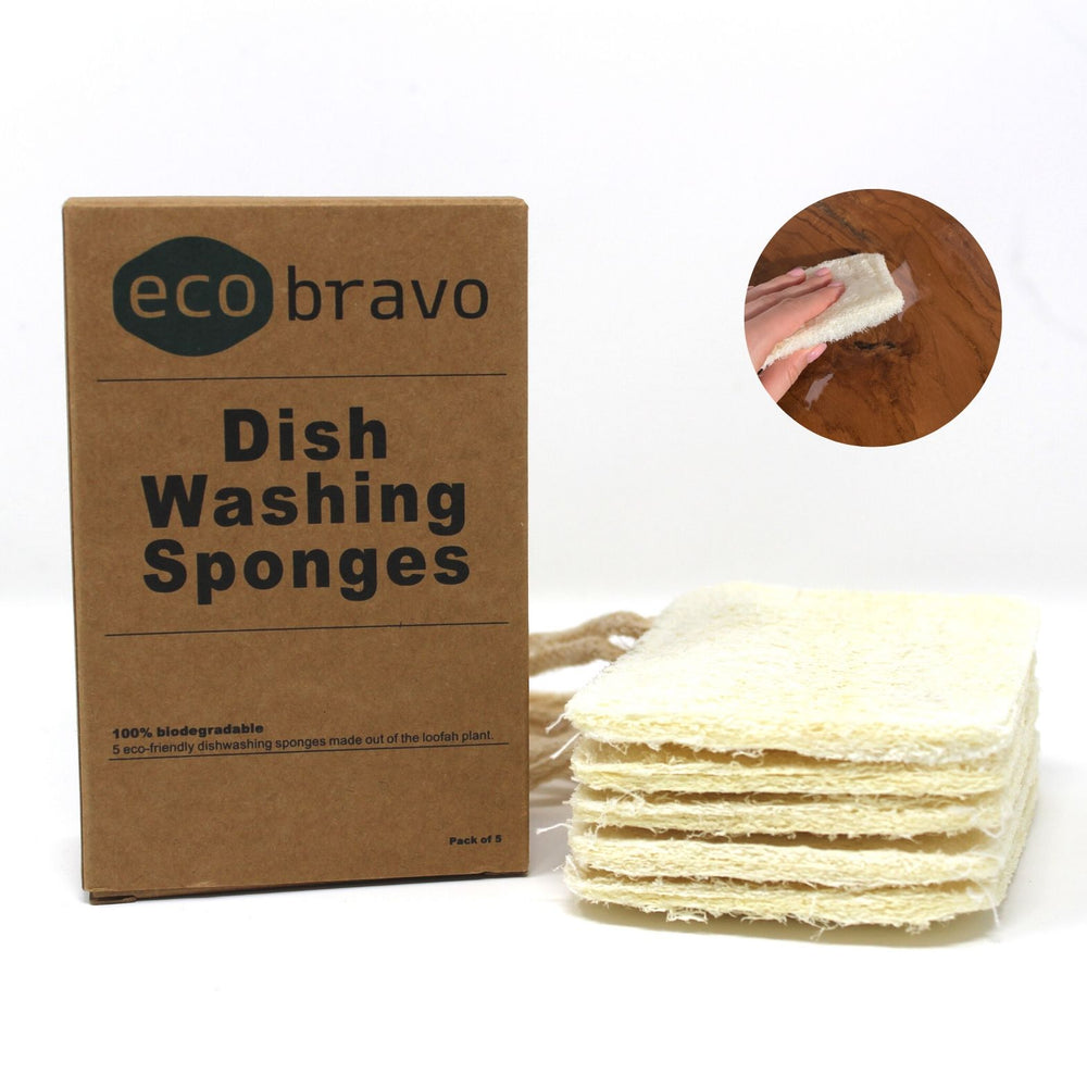 Natural Loofah Dishwashing Sponge (Set of 5)