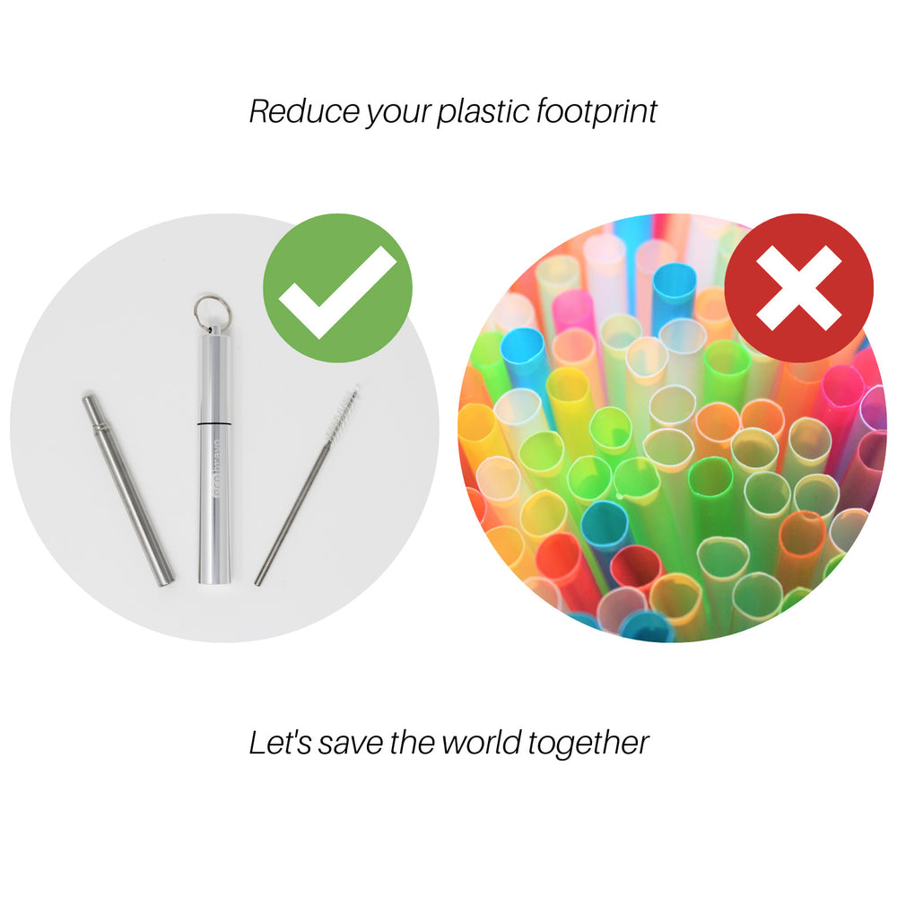 Reusable Telescopic Straw With Keyring Case