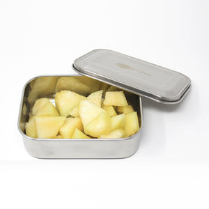 Stainless Steel Lunch Box with Reusable Cutlery & Pouch - No Compartments