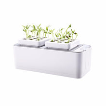 Load image into Gallery viewer, Smart Herb Hydroponic Kit