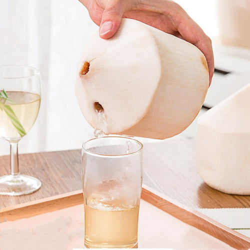 Coconut & Stone Punch