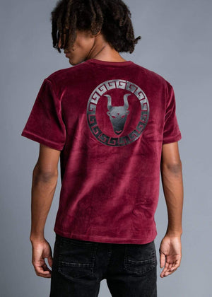 Boys Burgundy Velour Toro Logo T-shirt