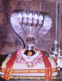 Sri Magudeshwarar Temple | Temple Prasadam| Book online to perform Puja in Temples | Anarghyaa.com