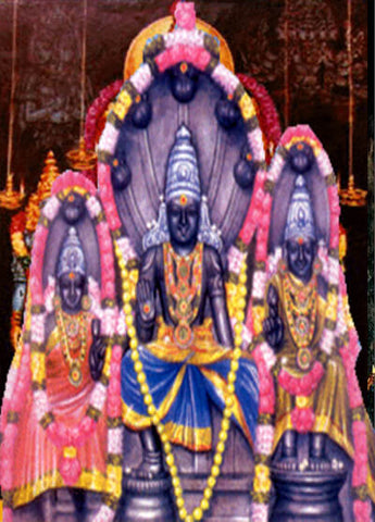 Book online to perform puja in Rahu Graha Temple, Anarghyaa.com